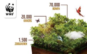 WNF zet een boom op over de Amazone